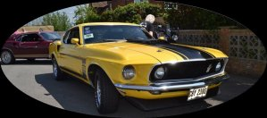 Yellow Mustang oval 896x395