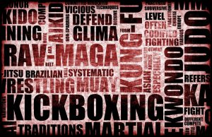 Fight Club. MMA. Martial Arts. Boxing. Wrestling. Train everyday. Super Soldier Project.