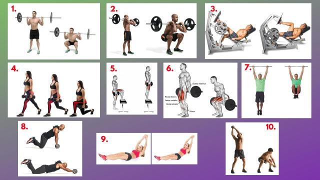Barbell Back Squat. Barbell Front Squat. Single-Leg Press. Dumbbell Lunges. Dumbbell step-ups. Barbell Hack Squat. Hanging knee raises. Abs Wheel Rollout. Hollow Rocks. Dumbbell woodcutters.