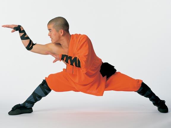 Snake Kung Fu. Martial Arts. Martial Arts of the World. Chinese Martial arts.