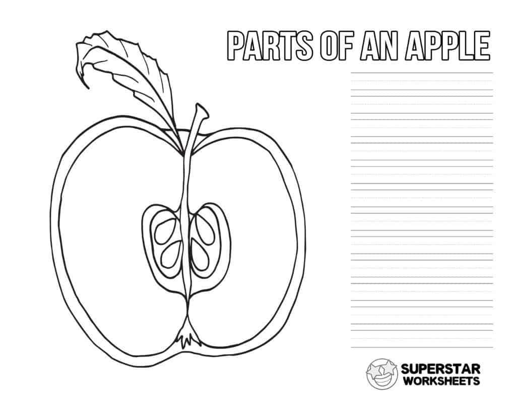 Apple Worksheets