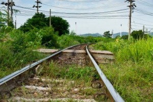 15257638-railroad-tracks-surrounded-by-green-grass