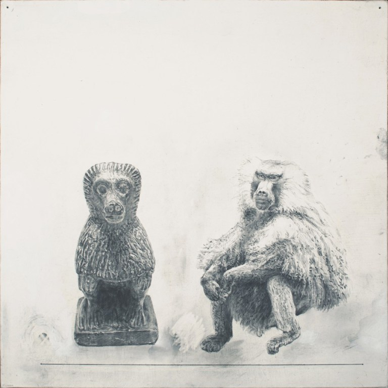 "Baboon-Baboon, 2014  12 x 12"" graphite, acrylic on canvas panel"