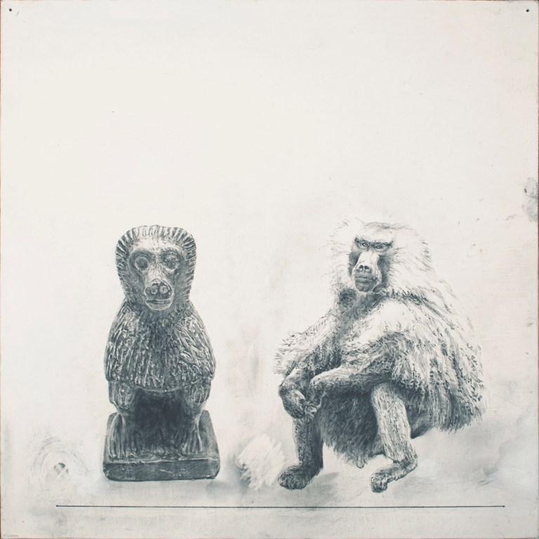"Baboon-Baboon, 2014  12 x 12"" graphite, acrylic on canvas panel"
