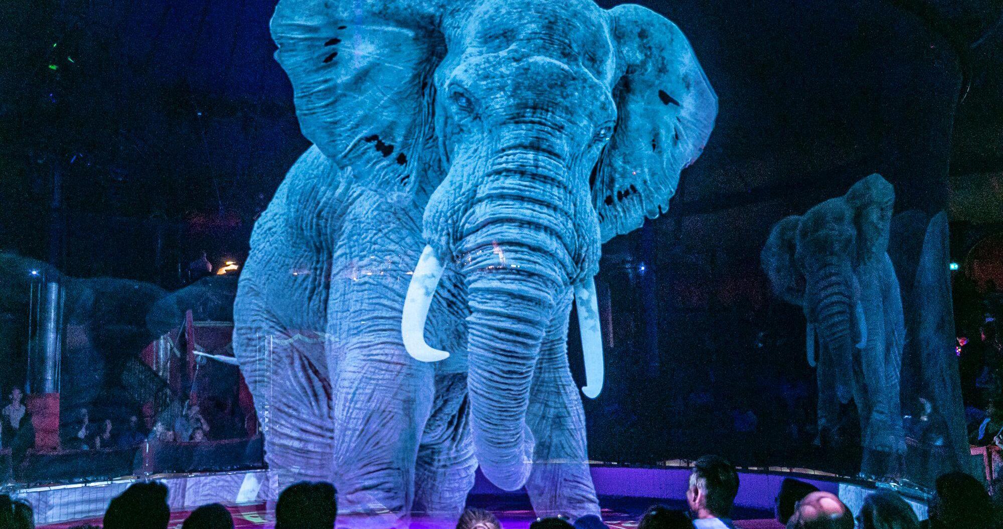 Circo substitui animais por hologramas em 3D
