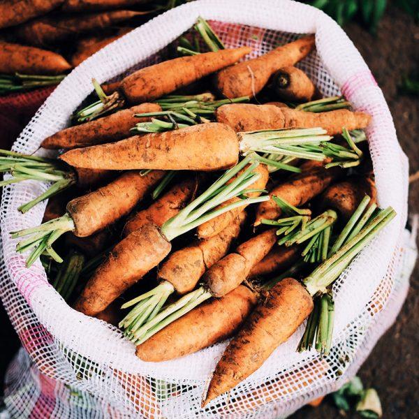 Zanahorias (Supertomate - Tienda online)