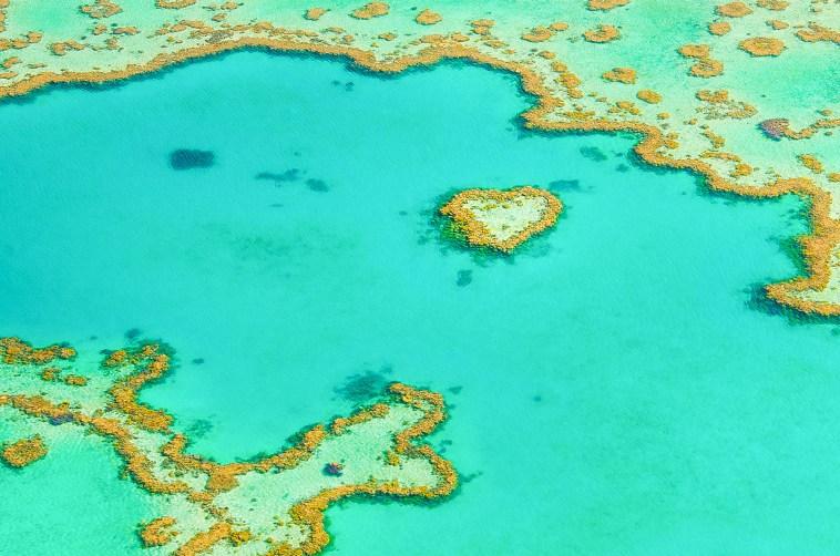 vol grande barrière de corail activités australie