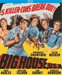 bighouseCOVER