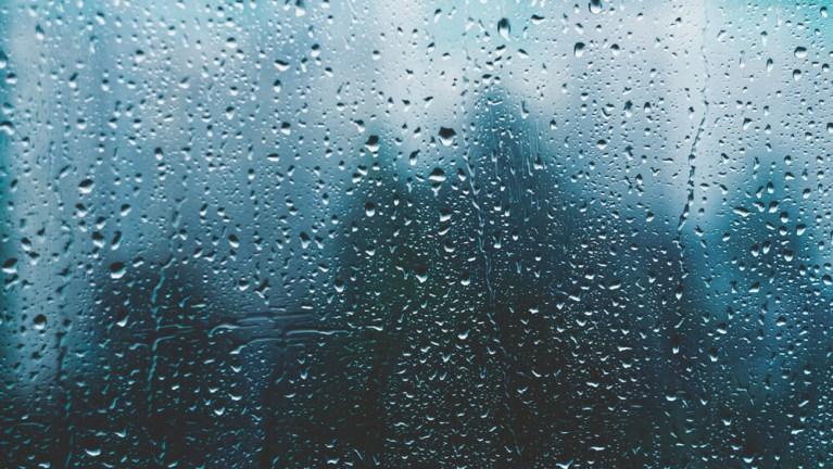 Read more about the article Le bruit de la pluie – Floriane Point
