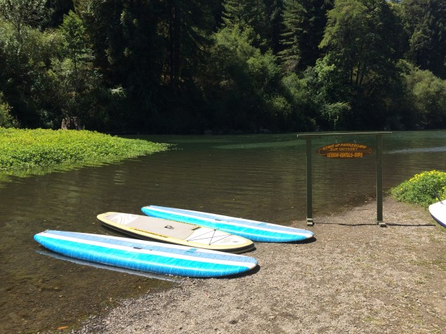 SUP rentals on the Russian River!