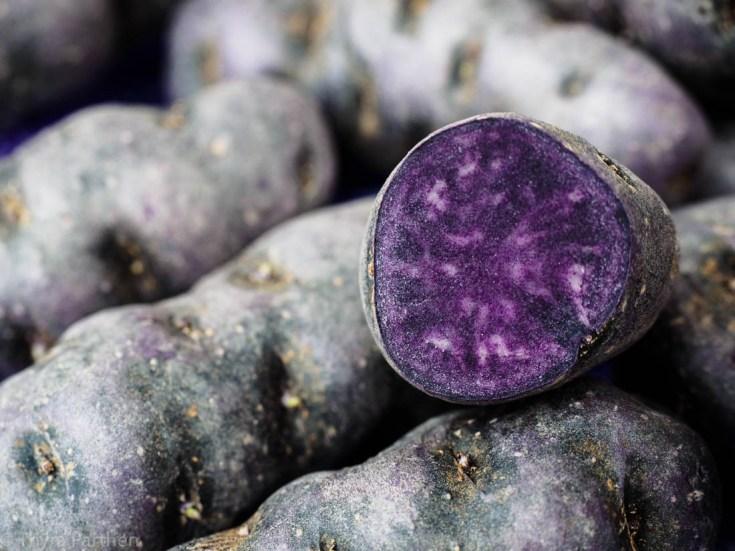 Vitelotte - blaue Kartoffeln