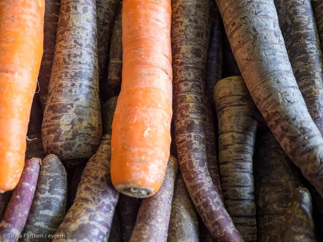 Karotteneintopf mit Hähnchenbrust