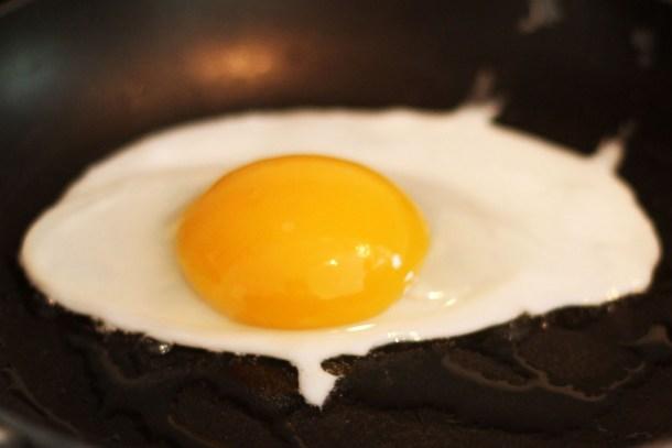 Fried duck egg