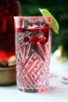 Cranberry Gin and Tonic is a fantasticly festive long drink, ideal for post Christmas shopping celebrations find the recipe at Supper in the Suburbs