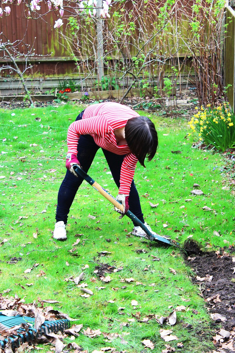 Find out how we are getting on turning a neglected garden into a ktichen garden full of edible plants.