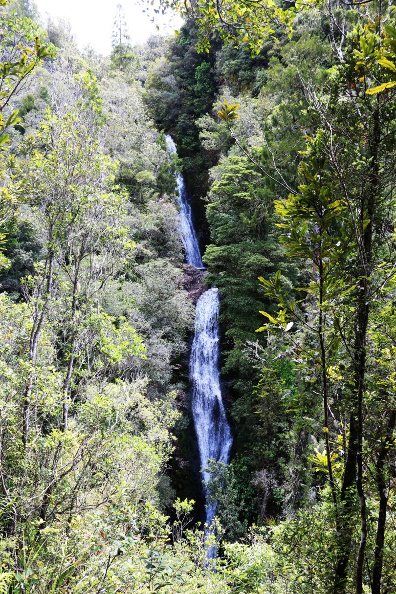 Hiking up Wentworth Falls is a great way to break up your road trip. There is so much to be seen while doing a self-drive tour of New Zealand.