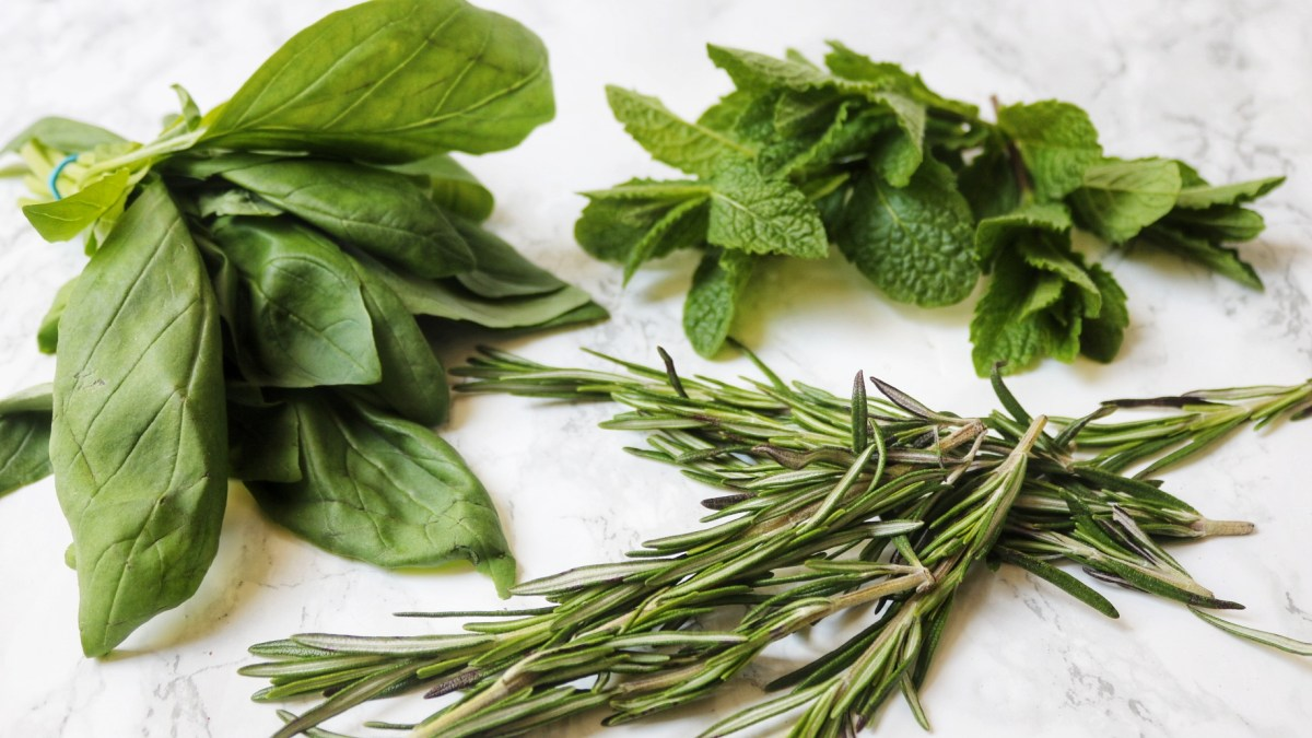 Herbs for flavouring kombucha