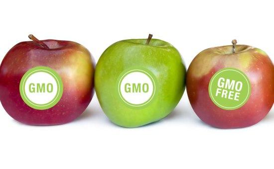 gmo-apples