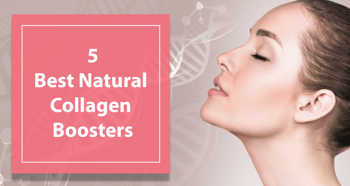 5 Natural Collagen Boosters You Must Include In Your Daily Meal Plan