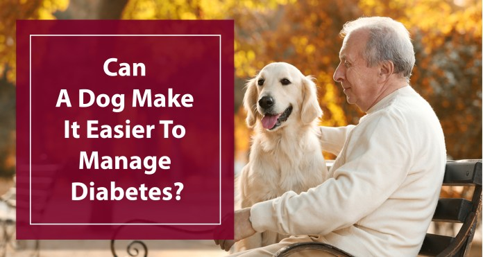 Can A Dog Make It Easier To Manage Diabetes
