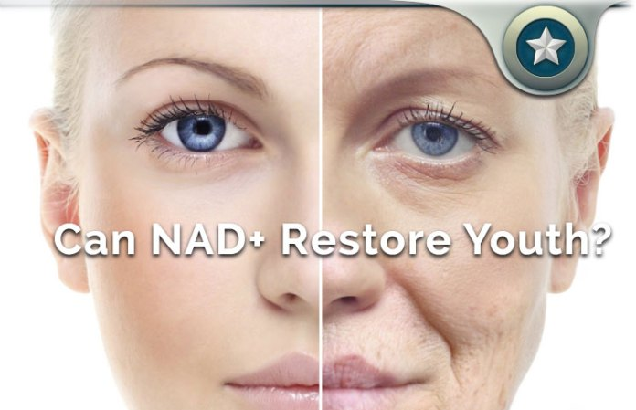 NAD+ Supplement Review - What is Nicotinamide Adenine Dinucleotide