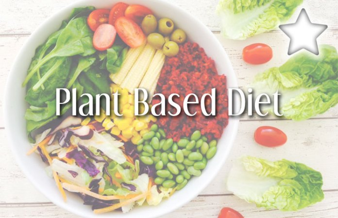 Plant Based Diets