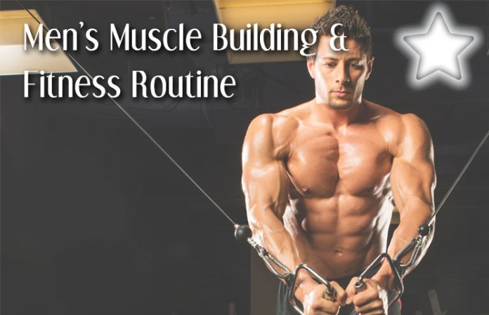 Top 3 Men's Muscle Building & Fitness Routine Tips For Beginners