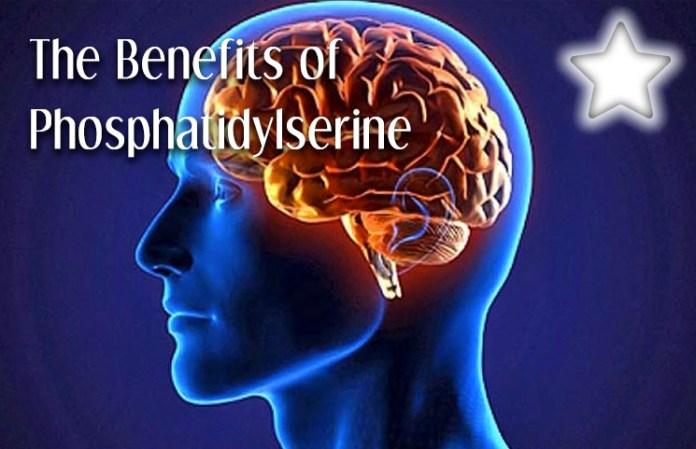 Benefits of Phosphatidylserine