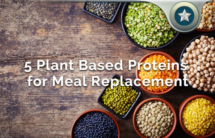 5 Plant Based Proteins for Making A Healthy Meal Replacement Shake