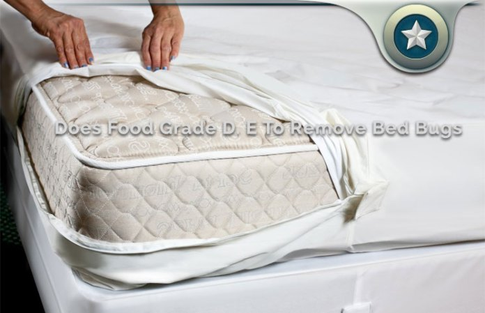 How Fast Does Diatomaceous Earth Kill Bed Bugs