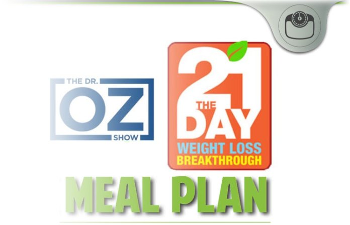 21 day weight loss meal plan recipes review ozs 2017 doctor ozs 21 day weight loss breakthrough diet meal plan system fandeluxe Gallery