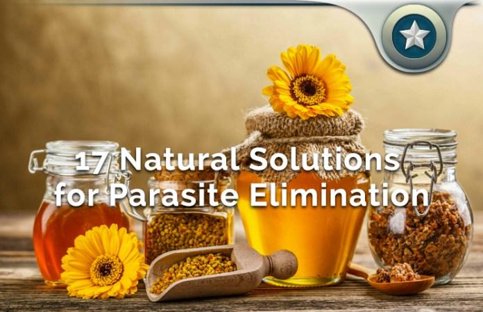Parasite Elimination