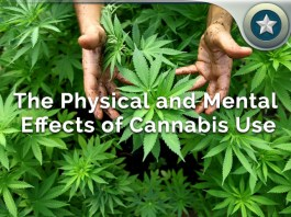 medical cannabis health effects