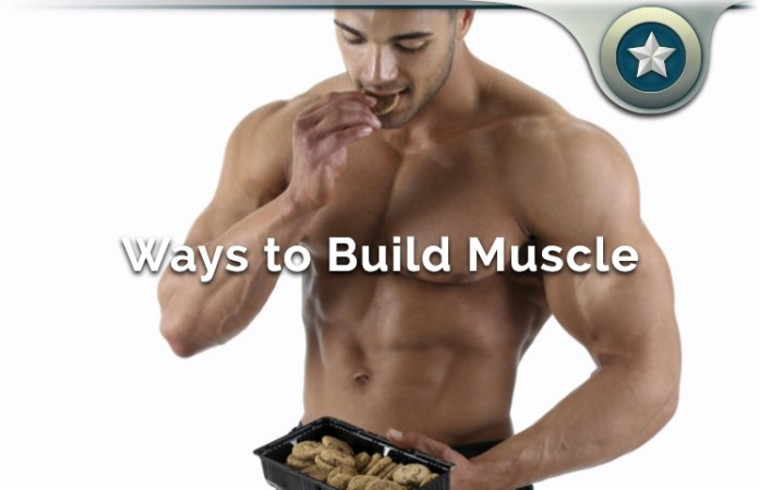 build lean muscle mass growth