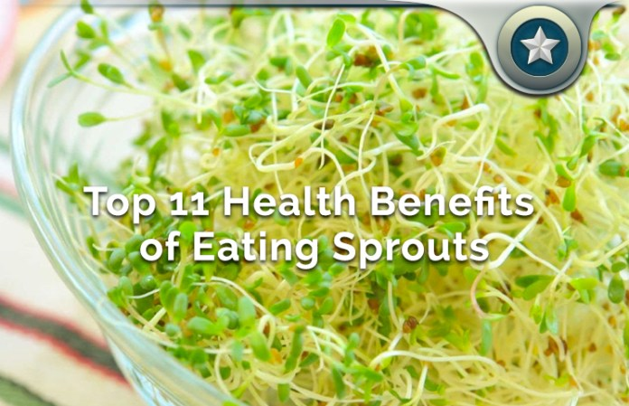 Top 11 Health Benefits of Eating Sprouts