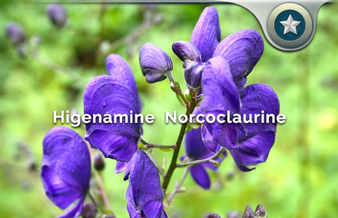 Higenamine Norcoclaurine