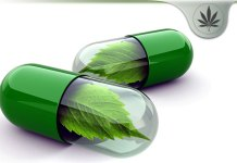 Marijuana Cleanse Detox