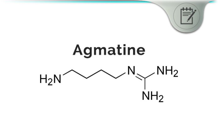 Agmatine Review - L-Arginine Amino Acid Biogenic Amine Brain Benefits?