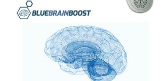 blue brain boost