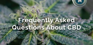 CBD Oil FAQ