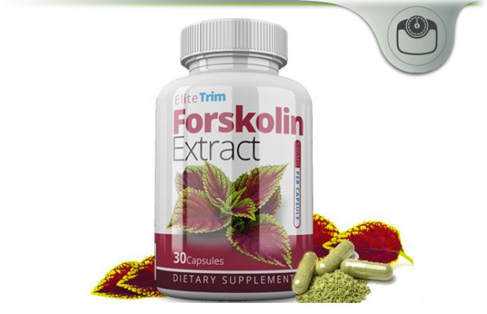 elite trim forskolin