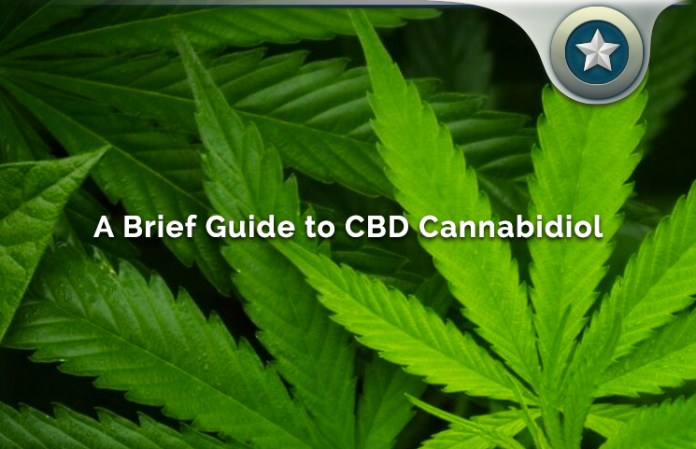 A Concise Guide To Cannabidiol (CBD) And Its Benefits, Uses & Effects