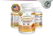 Nature's Branch Turmeric Curcumin