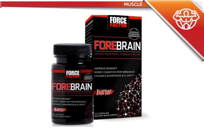 Force Factor Forebrain