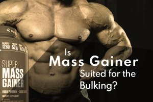 Is Mass Gainer Suited for the Bulking Phase? – Find Out the Truth!