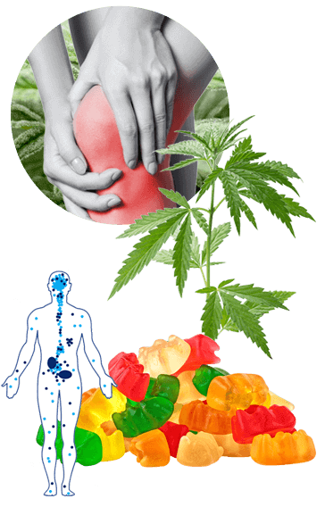 Features, Advantages, Benefits Of Green Lobsters CBD Gummies Get Result