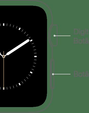 Coroa Digital