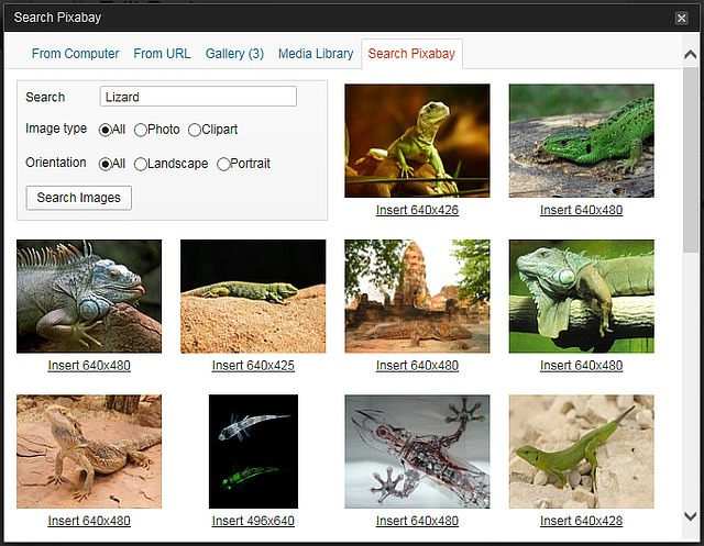 Extended – Pixabay Image Search Module