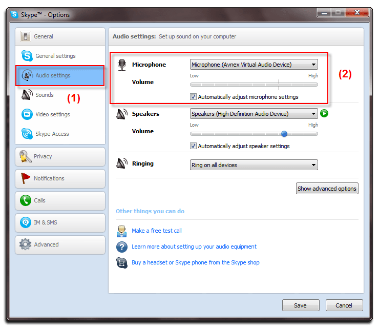 Fig 4: Skype - Audio Settings