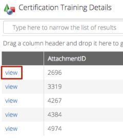 CT6 - View Attachment